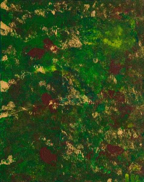 a Terra IMG_8480